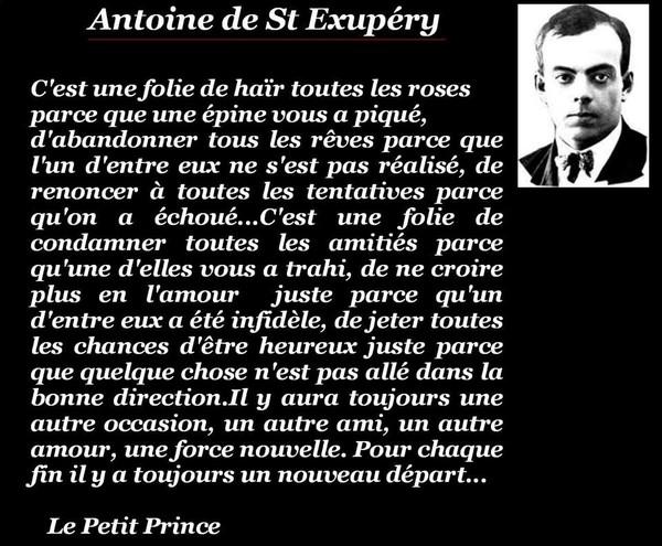 Une Citation D Antoine St Exupery